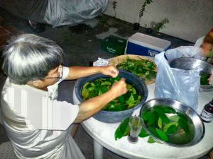 """. Our youngest brother, Johnny at home preparing my """"Graviola Tea Leaves"""" in Irineville, Paranaque City, Philippines. Thank you, brother Johnny. God bless."""